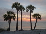 Port Kent Photos - Tampa Bay Sunset by Gail Kent
