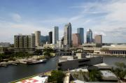 Tampa Skyline Posters - Tampa Florida landscape Poster by David Lee Thompson