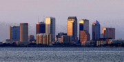 Tampa Skyline Posters - Tampa Florida Usa Poster by David Lee Thompson
