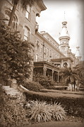 Ut Prints - Tampa Gem in Sepia Print by Carol Groenen