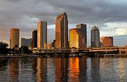 Tampa Bay Florida Posters - Tampa in reflection Poster by David Lee Thompson