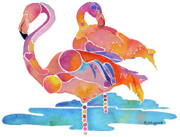 Flamingos Framed Prints - Tampa NIC Flamingos Framed Print by Jo Lynch