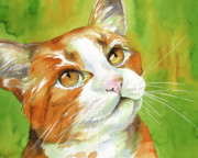 Watercolor Cat Print Posters - Tan and White Domestic Cat Poster by Cherilynn Wood