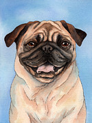 Dog Watercolor Framed Prints - Tan Pug Framed Print by Cherilynn Wood