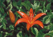 Tangerine Paintings - Tangerine Lilly by Robert Sesco