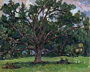 Berkshires Paintings - Tanglewood Tree by Thor Wickstrom
