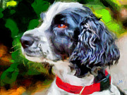 English Cocker Spaniel Posters - Tango - English Cocker Spaniel Poster by Laurence Canter