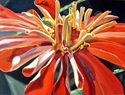 Zinnia Paintings - Tango-ing with a Zinnia by Stephanie Corder