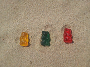 Gummy Candy Prints - Tanning Gummy Bears Print by Kammy Hodges