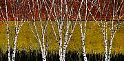 Birches Framed Prints - Tante Betulle Framed Print by Guido Borelli