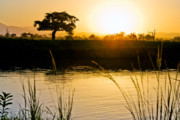 Sunset Prints - Tanzanian sunset Print by George Messaritakis