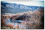 Taos Prints - Taos Creek Print by Lisa  Spencer