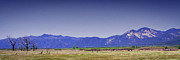Taos Prints - Taos Landscape Print by David Patterson
