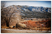 Taos New Mexico Framed Prints - Taos Mountain View 1 Framed Print by Lisa  Spencer