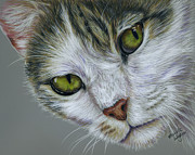 Michelle Wrighton Posters - Tara Cat Art Poster by Michelle Wrighton