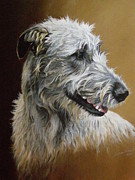 Wolfhound Framed Prints - Tara Framed Print by Julian Wheat