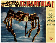 1950s Poster Art Framed Prints - Tarantula, 1955 Framed Print by Everett