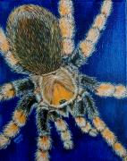 Tarantula Paintings - Tarantula by Richard Brooks by Richard Brooks