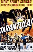 1950s Poster Art Framed Prints - Tarantula, John Agar, Mara Corday, 1955 Framed Print by Everett