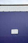 Blue Tarp Posters - Tarp Covering Chain Link Fence Poster by Paul Edmondson