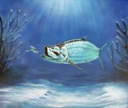 Sea Life Paintings - Tarpon by Larry Cole