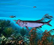 Fish Underwater Paintings - Tarpon by Ralph Martens