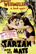 Sullivan Posters - Tarzan And His Mate, Johnny Poster by Everett