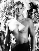 Barechested Prints - Tarzan, Johnny Weissmuller, 1932 Print by Everett