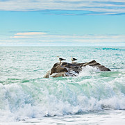 Tasman Sea Print by MotHaiBaPhoto Prints