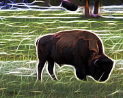 Bison Digital Art - Tatanka by Eddie McGee