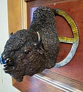 Bison Sculpture Originals - Tatanka Knocks by Doug  Bison