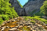 Taughannock Falls State Park Framed Prints - Taughannock Falls Canyon Framed Print by Adam Jewell