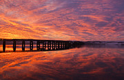 Fife Posters - Tay Bridge Sunrise Poster by Derek Whitton