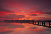 Dundee Photos - Tay Road Bridge Dawn by Derek Whitton