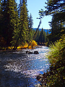 Gunnison Framed Prints - Taylor River Framed Print by Terril Heilman