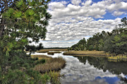 Donnie Smith Framed Prints - Tea Farm Creek II Framed Print by Donnie Smith