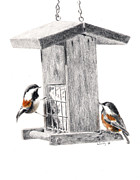Chickadee Drawings Prints - Tea for Two Print by Wendy Mould