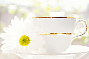 Teacup Filled With Sunshine Print by Kim Fearheiley