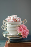 Carnation Posters - Teacups And Candy Poster by Shawna Lemay