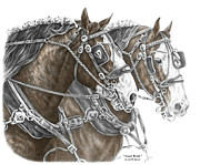 Swan Drawings Prints - Team Work - Clydesdale Draft Horse Print color tinted Print by Kelli Swan