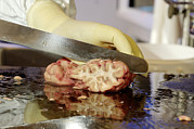 Brain Prints - Technician Dissecting A Human Brain Print by Volker Steger