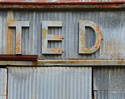 Siding Prints - TED Rusty Name Sign Art Print by Nikki Marie Smith