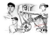 Red Sox Drawings - Ted Williams by Matthew Riedl