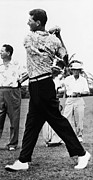 Golf Shirt Prints - Ted Williams Of The Boston Red Sox, Ca Print by Everett