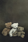 No Love Photo Posters - Teddy Bear Family Poster by Joana Kruse