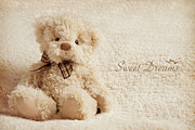 Toy Animals Prints - Teddy Bear Print by Tetyana Kovyrina