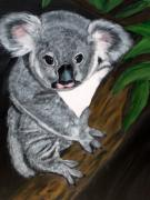 Koala Paintings - Teddy Bear by Vickie Wooten