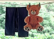 Casual Blue Jeans Posters - Teddy On Clothes Line Poster by Aparna Balasubramanian