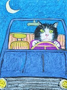 Black And White Cats Pastels - Teddys Evening Drive by Reb Frost