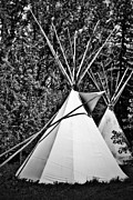 Teepee Prints - Teepee for Two Print by Larysa Luciw